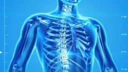 -human-skeleton-163715_640