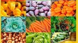 Vegetarisches -LOW CARB-