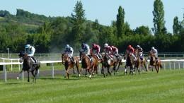 horse-race-1665688_960_720