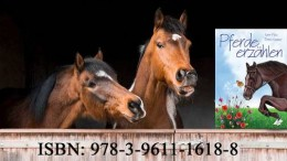 PferdeNaehkaestchen