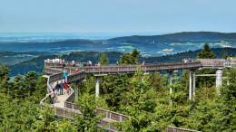 16.07.2016: Waldwipfelweg in Sankt Englmar - © Marco Felgenhauer / Woidlife Photography