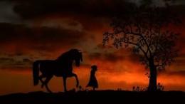 PferdegeschichteAmyPferdeErzaehlen