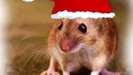 WeihnachtenMaeuseBrittaKarina