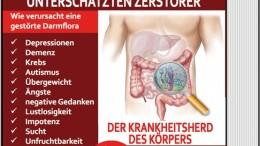 Darm-Zerstörer-Cover - Kopie (2)