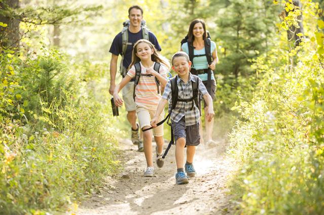 Eine Familie macht einen Waldspaziergang