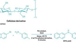 Cellulose Derivative