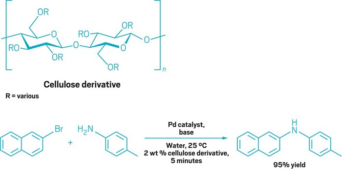 Cellulose Derivative