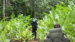 klein_Jungle Expedition_Ian Craddock (002)
