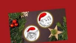 FrischDruckpresseWeihnachtenNepoFinn