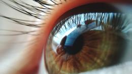 Auge mit Fokus auf Iris