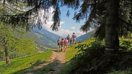 Suedtirol, Ultental, Ultner Hofeweg, Oberhalb des Falschauer Hofes, von den Urlarchen Richtung Falschauer Hof,