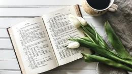 open-book-2555103_1280