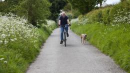 Mann faehrt mit Hund an der Leine Fahrrad